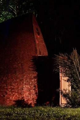 Bild: Vom abnehmenden Licht in die schützende Dunkelheit